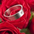 Titanium engagement ring in red rose — Stock Photo