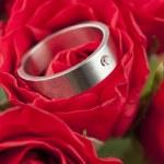 赤いバラのチタン婚約指輪 — ストック写真