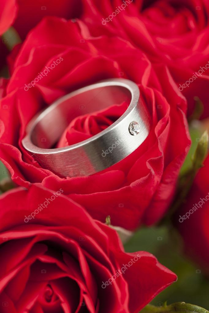 Titanium engagement ring with diamond in red rose. Shallow dof  Stock Photo #19211061