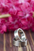 Titanium wedding rings — Stock Photo