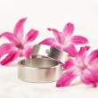 Titanium wedding rings - Stock Photo