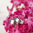 Wedding rings on red hyacinth - Stock Photo