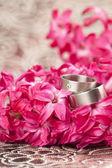Wedding rings on red hyacinth — Stock Photo