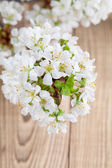 Cherry blossoms on wooden background — Stock Photo