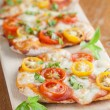 Mini pizzas with mozzarelland cherry tomatoes — Stock Photo #30583267