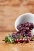 Fresh and dried cranberries — Stock Photo