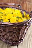 Dandelions in a basket — Stock Photo