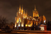 Catholic cathedral. Winter. Night. — Foto Stock