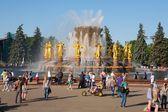 People walking near Peoples Friendship Fountain — Stock Photo