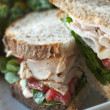 Turkey Sandwich — Stock Photo