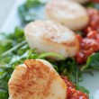 Seared Scallop Appetizer - Stock Photo