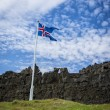 Iceland flag, grass and volcanic rocks at Thingvelir — Foto de Stock