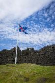 Bandeira da Islândia, grama e rochas vulcânicas no thingvelir — Fotografia Stock