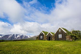 Icelandic green roof houses — Stock Photo