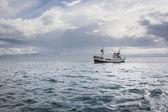 Whale watching schiff — Stockfoto