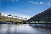 Icelandic village: Seydisfjordur — Stock Photo
