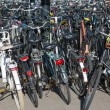 Bicycles parking in the Netherlands - Foto Stock