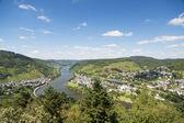 řeka mosela poblíž bullay v německu — Stock fotografie