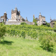 Cochem castle in Germany, surrounded by vineyards — Stock Photo