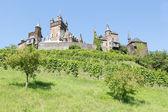 Cochem kasteel in duitsland, omgeven door wijngaarden — Stockfoto