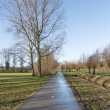 Dutch bicycle path in wintertime with bare trees — Stock Photo