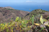 Mountains with cactuses at La Palma, Canary Islandss — Foto de Stock