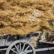 Traditional Dutch wooden haywagon loaded with a pile of hay — Stock Photo