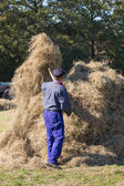 NIEUWEHORNE, THE NETHERLANDS - SEP 28: An unknown farmer is handicraft collecting hay to a haystack during the agricultural festival Flaeijel on September 28, 2013, the Netherlands — Stock Photo