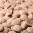 Background of brown ginger nuts, typical Dutch sweets at Sinterklaas event — Stock Photo
