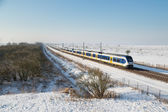 Yellow train in Dutch rural winter landscape of National Park Oostvaardersplassen — Stock Photo