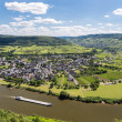 Aerial view of Moselle River in Germany near Punderich — Stock Photo #43103779