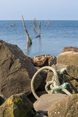 Dutch sea with fishing nets and anchoring rope — Stock Photo