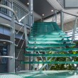 Glass stairway in a modern office building — Stock Photo #45044491