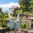 Tropical garden with pond and palace at Funchal,  Madeira island, Portugal — Stock Photo #46132519