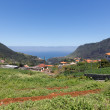 Landscape of Madeira with mountains, houses and agriculture — Stock Photo #46132533
