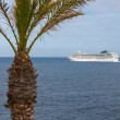A big cruise ship is leaving tropical Madeira — Stock Photo
