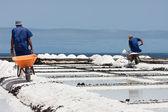 Trabajadores con carretilla en islas de la palma, canarias de extracción de la sal — Foto de Stock