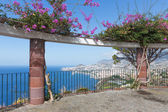 View platform with ornamental flowers and an aerial view at Funchal, Madeira — Stock Photo