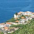 Aerial view of houses along coastline Madeira Island — Stock Photo #51783919