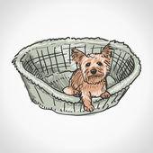 约克夏犬在篮子里 — 图库矢量图片