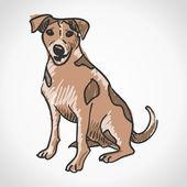 Jack Russell Terrier — Stock Vector