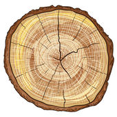 Wood Log — Stock Vector
