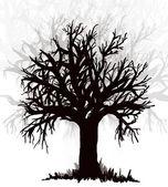 Tree. Black silouette — Stock Photo