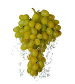Grape in spray of water. Juicy grape with splash — Stock Photo