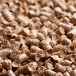 Wood pellet background pattern — Stock Photo