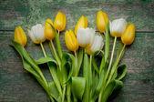 Tulips flowers on wooden — Stock Photo