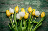 Yellow tulips over green wooden background — Stock Photo