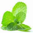 Mint leaf close up on a white — Stock Photo #41878265