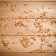 Wood chips — Stock Photo #48681445