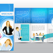 Brochure with figures - Stock Vector